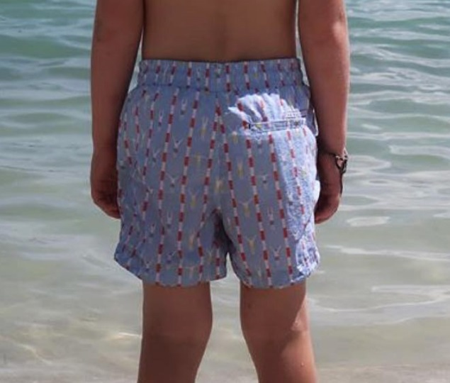 Picture of pale blue, red and white pattern Boys Board Shorts